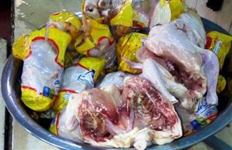 ضبط متعهد توريد دجاج فاسد لمستشفى ديرب نجم العام بالشرقية | صور