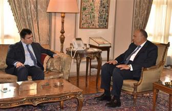 شكرى وكليمكين يبحثان إنشاء آلية تشاور سياسي على مستوى وزارتي الخارجية المصرية والأوكرانية