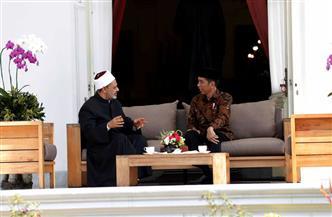 الإمام الأكبر خلال لقائه الرئيس الإندونيسي: الأزهر يتصدي للتطرف بفكره الوسطي