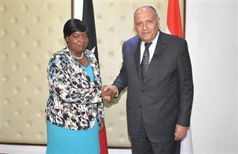 وزير الخارجية يبحث مع نظيرته الكينية العلاقات الثنائية والقضايا الإقليمية