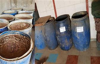 ضبط 6 أطنان سردين غير صالحة للاستهلاك الآدمي بالإسكندرية
