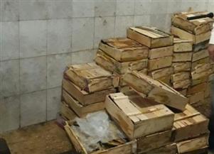 ضبط 2000 كيلو فسيخ وأسماك وكبدة مجمدة منتهية الصلاحية في الحسينية بالشرقية