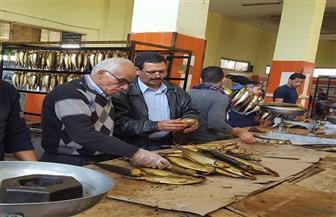 ضبط 104 أطنان رنجة فاسدة قبل طرحها في أسواق الغربية