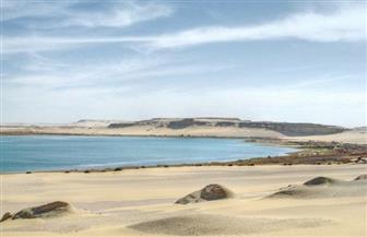 """""""البيئة"""" تعقد اجتماعا لإعادة التوازن البيئي في بحيرة قارون"""