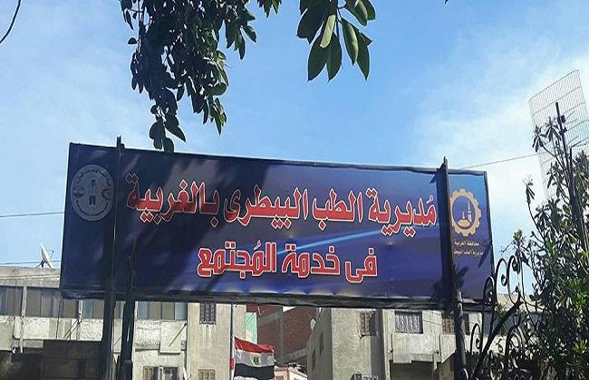 بيطرى الغربية ينظم قافلة طبية وعلاجية فى قرية  سماتاى بقطور