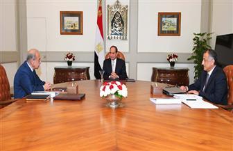 الرئيس السيسي يشدد على اتخاذ كل الإجراءات اللازمة للتنفيذ الناجح لبرنامج الإصلاح الاقتصادي