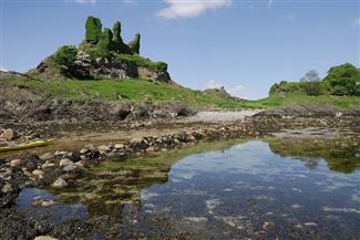 خوفا من الروس والعرب.. خمسة من سكان جزيرة اسكتلندية يشترونها | صور