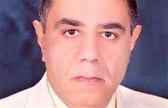 """صدور كتاب """"قصة الفكر التائه"""" لمحمد حسين أبو العلا"""