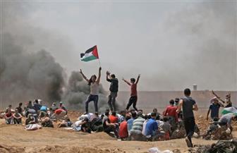 """""""المحافظين"""": المجزرة الإسرائيلية بحق الفلسطينيين وصمة عار.. وعلى المجتمع الدولي التدخل الفوري"""