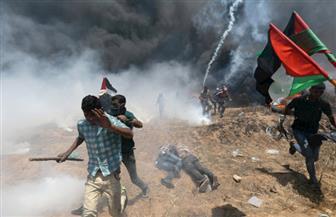 """""""اقتلاع"""".. معرض فني في رام الله يروي جانبا من حكاية اللجوء الفلسطينية"""