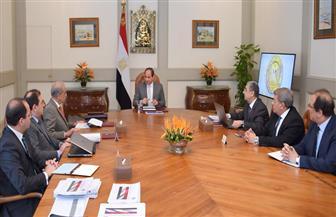 الرئيس السيسي يوجه بمواصلة جهود التحديث الشامل لقطاعي الكهرباء والبترول