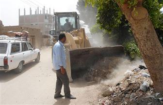 حملات للنظافة والتجميل بعدد من قرى مركز البلينا جنوب سوهاج| صور