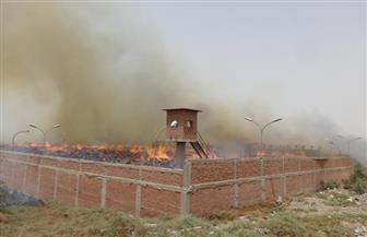 فريق من النيابة يعاين موقع حريق مصنع الخشب الحبيبي بكوم أمبو بعد التبريد