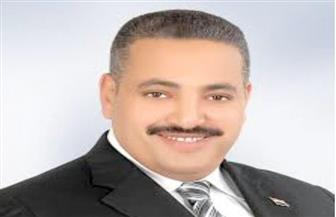 برلماني: مصر ستشهد بناء مئات المصانع بالشراكة مع الصين وروسيا في الفترة المقبلة