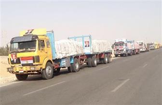 """قافلة مساعدات """"ثانية"""" من الأزهر تتوجه إلى قطاع غزة اليوم"""