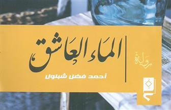 """اتحاد الكتاب يناقش """"الماء العاشق"""" لأحمد فضل شبلول"""