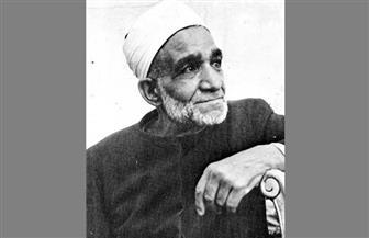 أئمة في سطور.. الشيخ محمود شلتوت