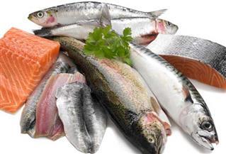 أطباء أمريكيون: تناول الأسماك الزيتية مفيد لصحة القلب