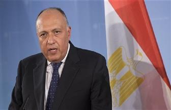 سامح شكري لسمير جعجع: مصر ملتزمة بالعمل على تلبية احتياجات الشعب اللبناني