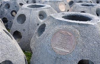 نصب تذكاري تحت سطح البحر في فلوريدا تمجيدا لضحايا الغواصات المفقودة