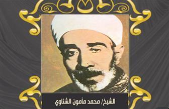 أئمة في سطور.. الشيخ مأمون الشناوي