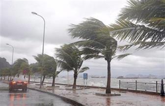 شجرة متهاوية تقتل مذيعا ومصورا أثناء عاصفة في نورث كارولاينا