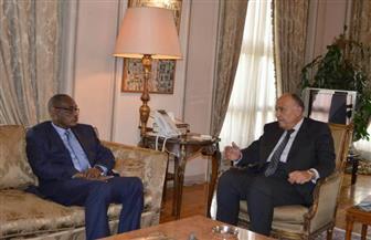 بدء مباحثات وزيري خارجية مصر والسودان| صور