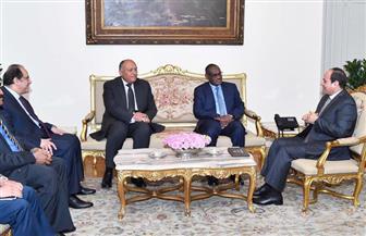 الرئيس السيسي يستقبل وزير خارجية السودان ويناقشان سبل تعزيز العلاقات الثنائية بين البلدين