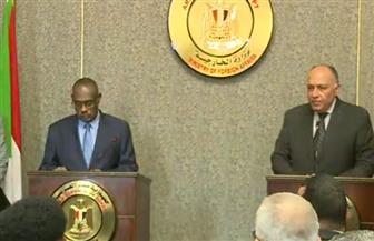 سامح شكري: اتفقت مع وزير خارجية السودان على تفعيل دورية التشاور السياسي شهريا