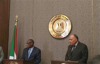"""شكري: حل الأزمة الليبية يجب أن يكون ليبيا """"خالصا"""".. والدرديري: علاقتنا """"خط أحمر لا يمكن تجاوزه"""""""