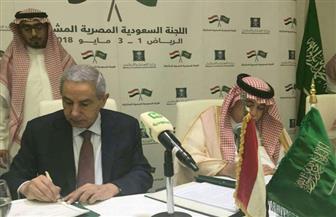 السعودية تدرس المشاركة في صندوق مصر السيادي وإنشاء منطقة صناعية