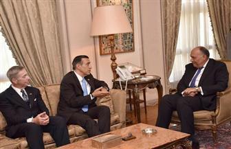 شكري لوفد الكونجرس: الدعم الأمريكي لمصر خلال الفترة الماضية لا يعكس خصوصية العلاقة بين البلدين | صور