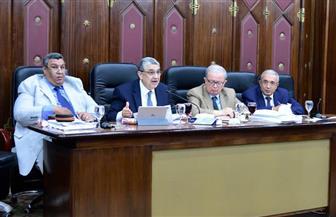 """وزير الكهرباء من البرلمان: """"ببقى مضايق وأنا برفع الأسعار لكن العدو أمامنا والبحر من خلفنا"""""""