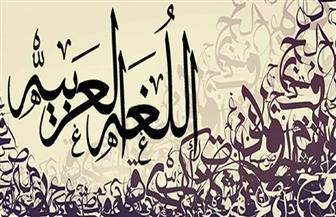 اللغة العربية من ضمن 13 لغة جديدة تضاف إلى ميزة الترجمة الفورية بالكاميرا فى جوجل