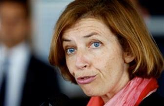 """وزيرة الجيوش الفرنسية تجري محادثات بشأن """"التدخلات التركية"""" في العراق"""