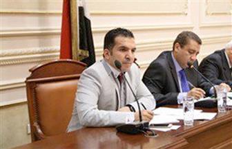 أمين سر لجنة المشروعات الصغيرة: ملفات الصحة والتعليم ستشهد تطورا في الولاية الثانية للرئيس السيسي