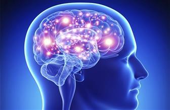 اكتشاف 3 جينات مسئولة عن تطور الدماغ البشري