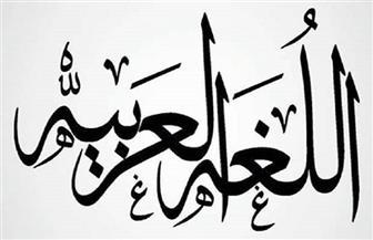 العربية ثاني أكثر اللغات المستخدمة في السويد