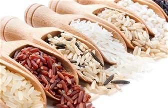 مشروع بحثى بين جامعتى بنها ووسط الصين لاستنباط أصناف جديدة من الأرز
