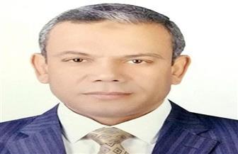"""تعيين عطية الطنطاوي وكيلا لـ""""البحوث والدراسات الإفريقية"""" بجامعة القاهرة"""