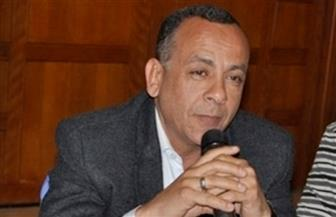 مصطفي وزيري : «المطرية عايمة على كنز من الآثار»
