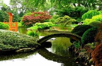 حدائق وأشجار الجنة في القرآن الكريم | فيديو