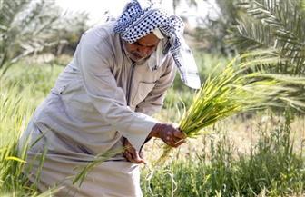 """""""الزراعة العراقية"""" تحظر 8 محاصيل بسبب أزمة المياه المنتظرة من سد """"أليسو"""" التركي"""