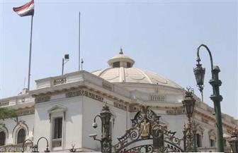 اليوم.. وزيرا التعليم والتعاون الدولي يلقيان بيانين أمام «النواب»