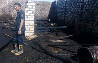 الحماية المدنية تسيطر علي حريق هائل بحظيرة مواشي في وسط الأقصر | صور