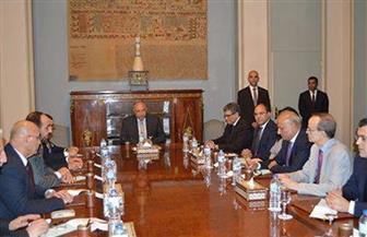 شكري لقيادات هيئة التفاوض السورية: مصر تدعم الحل السياسي للأزمة دون أي تدخلات خارجية