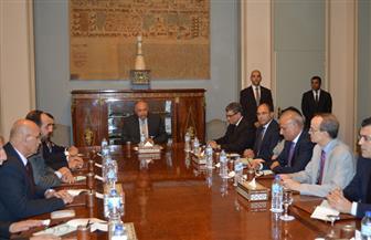 أبو زيد: شكري أكد للوفد السوري دعم مصر للحل السلمي بما يحفظ كيان الدولة السورية