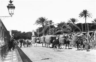 كوبري قصر النيل وميدان التحرير في صور نادرة من عام 1905