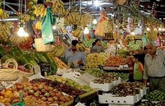 """""""الجيزة"""" تنفي شائعة نقل مقر سوق الجملة الحالي للخضراوات والفاكهة"""