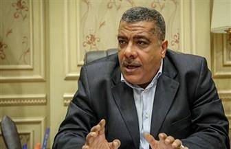 """رئيس """"إسكان البرلمان"""": قائمة سوداء تضم جميع الشركات المتعثرة فى الانتهاء من مشاريع الصرف الصحى"""